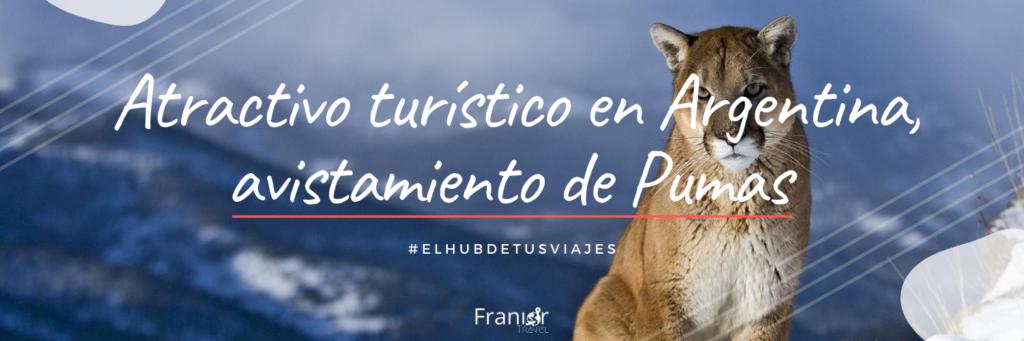 Atractivo turístico en Argentina, avistamiento de Pumas - Franior Travel Panama - Agencia Turismo - Viaje Argentina